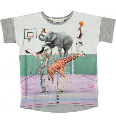 Camiseta pirámide de animales